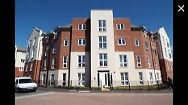 1 double bedroom flat for rent £450 pcm
