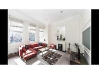 Wonderful bright 1 bedroom apartment with extremely high ceilings