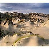 White Manna - Dune Worship (2013)