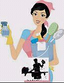Ironing , cleaning ur house and Laundry.. Monterey Rockdale Area Preview
