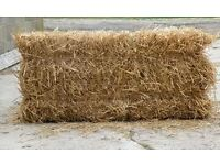 Excellent quality Hay bales and Straw bales FREE DELIVERY