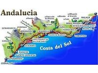 Successful real estate in Costa del Sol is looking for a business partner