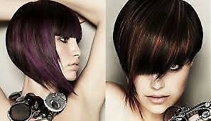 Hairdressing salon for sale Noosa Area Preview