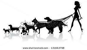 Doggie Walking Services