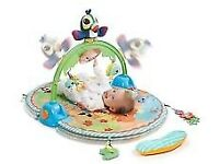 Baby Playing mat-little tikes good vibrations deluxe gym