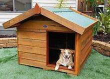 Dog Kennel Large Prospect Prospect Area Preview