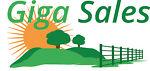 Giga-Sales