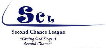 The Second Chance League