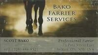 London based Farrier now accepting new clients!!