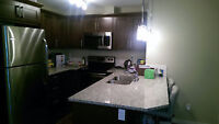 One furnished bedroom in Sage Hill, NW
