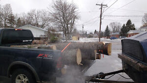 OUTDOOR WOOD FURNACE LOGS