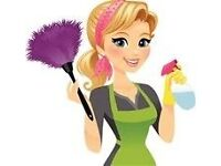 CLEANING- FAST, ACCURATE AND CHEAP From £ 9