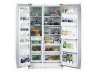 Samsung RS21NCSV American Style fridge/freezer