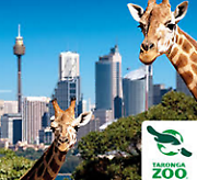 Taronga Zoo General Admission Earlwood Canterbury Area Preview