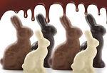 thechocolateduckny