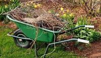 Spring clean up / junk removal /aeration