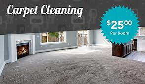 20yrs STEAM ∧ STAIN REMOVAL EXPERT Upholstery,Rugs,Mattress Hallett Cove Marion Area Preview