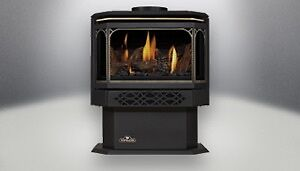 Napolean Free Standing Gas Fireplace
