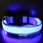 Brand new led light up dog collar