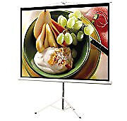 "80"" Portable Projector Screen"
