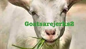 goatsarejerks2