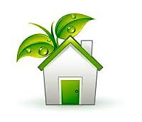 EXPERIENT DOMESTIC ECO CLEANER GOOD REFERENCES/CRB CHECK