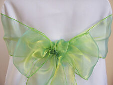 Apple green organza sashes for rent-- only .15 each