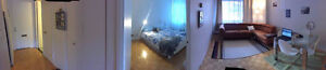3/2 sublet all included+furnished Mcgill 20th of June-20tAugust