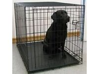 Dog cage/training crate