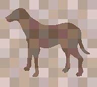 DOGGY FIELDTRIPS INC. Professional Dog Walking Service