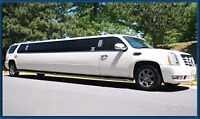 Best stretch limousine for Niagara Falls tour great limo service