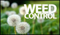 **FREE FERTILIZATION** and WEED CONTROL ONLY $40