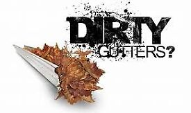 Dirty Gutters We will solve your problem !!! Leaf Guards fitted. Pest Proofing . gutter cleaning
