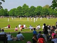Cricketers wanted: Richmond, West London