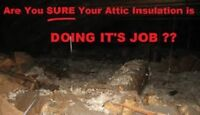 Your Homes Attic Insulation Experts !!!!!!!!!!!