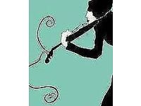 LooseStrings - string quartet available - we have played at weddings, birthdays, garden parties etc