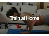A1 personal trainer. . Brings gym to you..