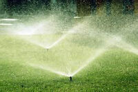 Does your yard need a new sprinkler system?