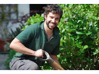 Experienced, driven and skilled landscaper required.