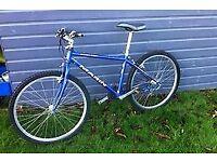 Light Flawless 43cm (M) 21-Speed City Bike