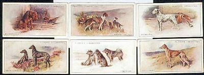 CIGARETTE CARDS. John Player Tobacco. DOGS. (Scenic). (Full Set of 50). (1925).