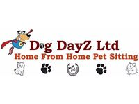 Animal Pet Sitting Services