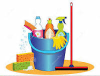 ***Reliable and Friendly Housecleaner and Organizer**