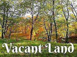 Vacant Land-Lots of Potential! MLS#201822637
