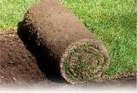 **FREE SOD**  (Also great for fill or raised flower beds)
