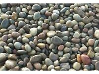 Moray pebble garden/driveway chips