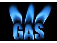 Gas trainee will work FREE OF CHARGE