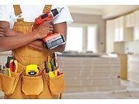 Handyman Builder Maintenance / painting / flooring / upkeep - call today!