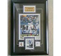 Eli Manning New York Giants Picture Frame 16 x 23