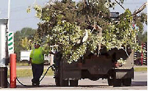 Branches  , Sod , Dirt,   And  Junk Removal  Same Day Service
